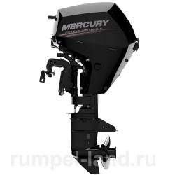 Лодочный мотор Mercury F 10 M EFI 4-тактный