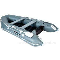 Лодка Гладиатор A 320 TH НДНД